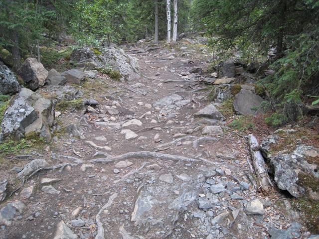 Hiking%202.JPG