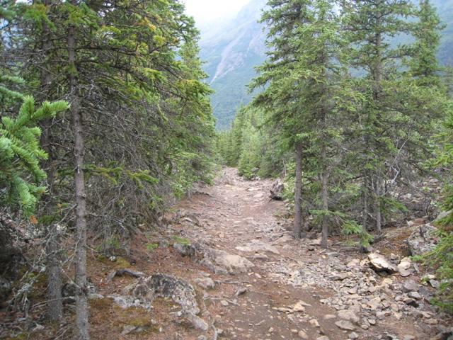 Hiking%203%20NEW.JPG
